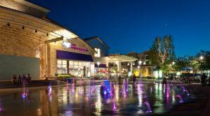 purple cow fairview texas