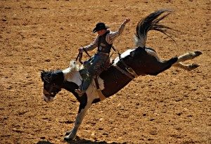 rodeo-3-300x205
